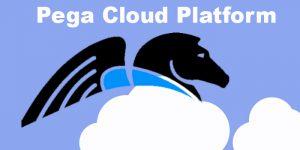 Pega-Cloud-Platform-nareshit