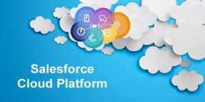 SalesForce-Cloud-Platform-nareshiT